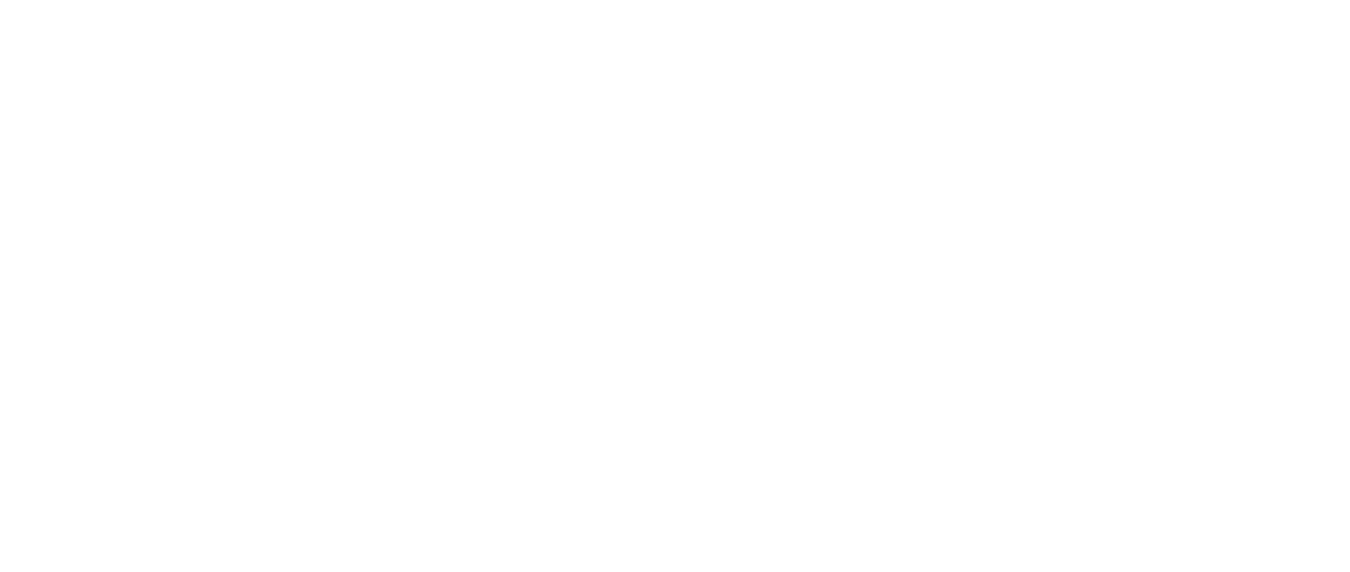 Vall d'Hebron Institute of Research