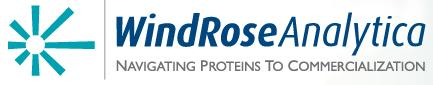 WindRose Analytica, Inc.